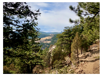 Paymaster Trail