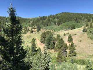 Nelson Ranch